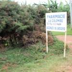 Annonce de la pharmacie