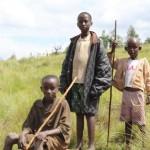 Jeunes bergers à Bisoro
